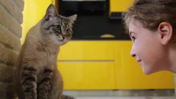 girl looking at gray cat