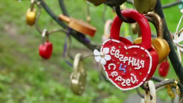 Lovers lock hangs on branch