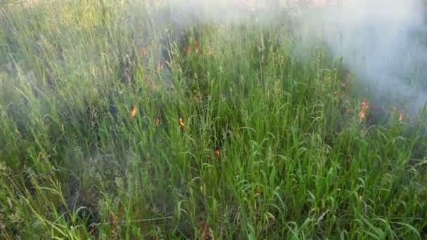 Grass hoří s mraky kouře
