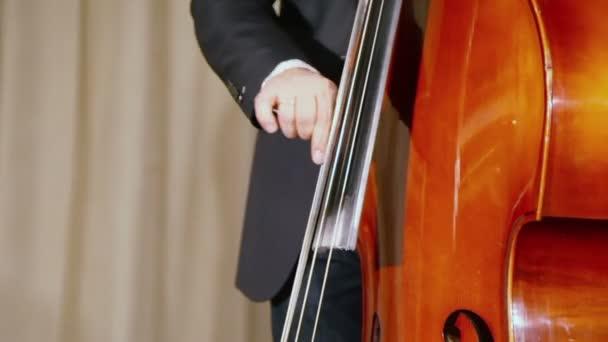 Man plays contrabass