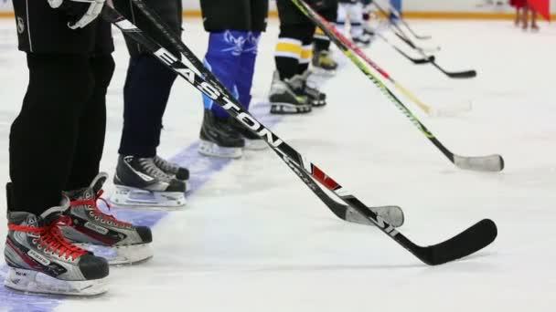 Hokejisté s holemi