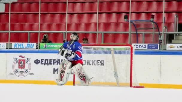 Hokejový brankář brání brána
