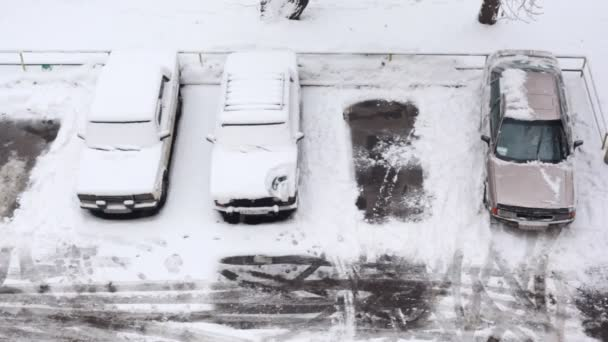 Snowed cars in parking lot