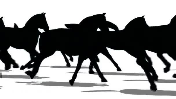 Sziluettjét a lovak, futás
