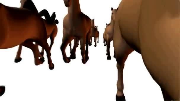 Mnoho silueta koně běží