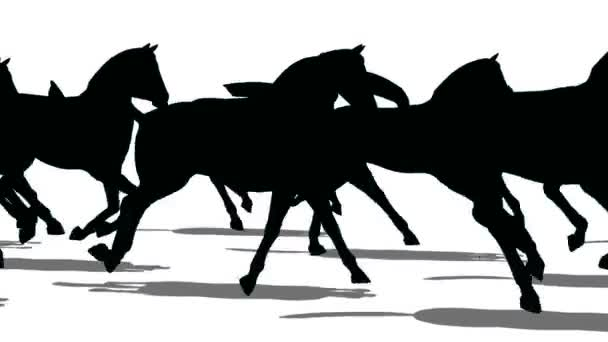 Silhouette of horses moving