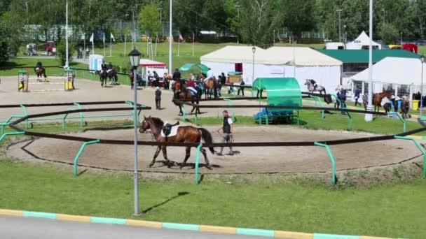 Lidé se zahřát koně na koni oblast