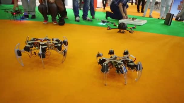 Two spider robots and quadrocopter