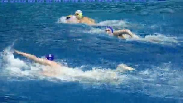 Water polo players swim