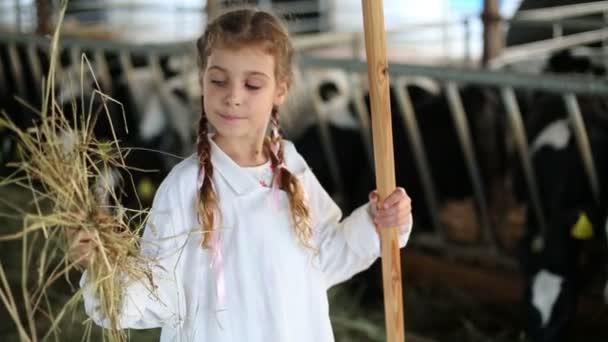 malá holčička drží seno pro krávy