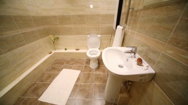 Modern toilet room with brown tiles