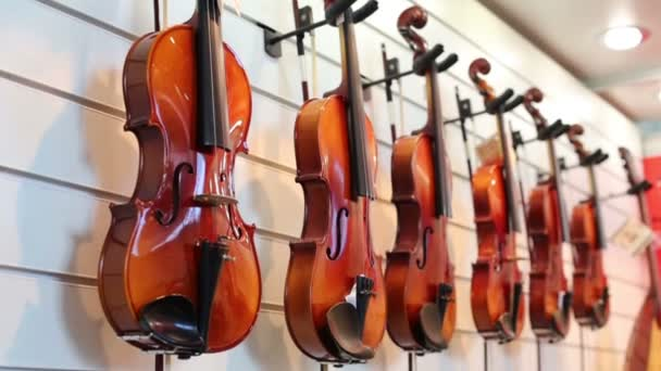 Hegedű hang a kiállítási stand
