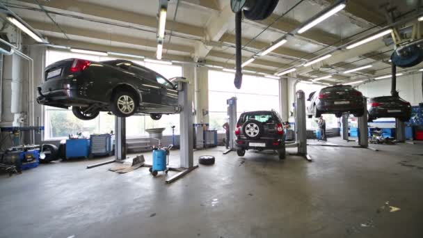 Mechanic and cars at lifts in workshop
