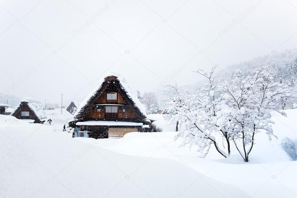 Japanese village at winter