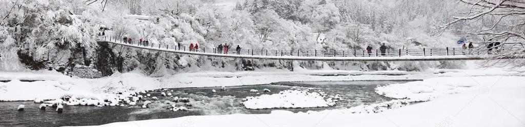 Japan at winter