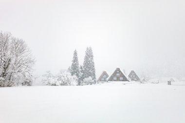 Kış, Japon Köyü
