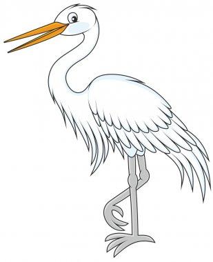 white egret walking