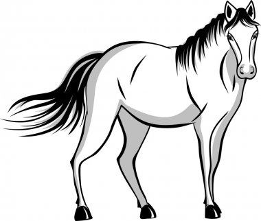 Quietly standing horse