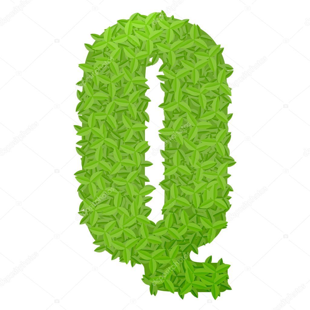 Uppecase letra q consisten en hojas de color verde - Color verde hoja ...