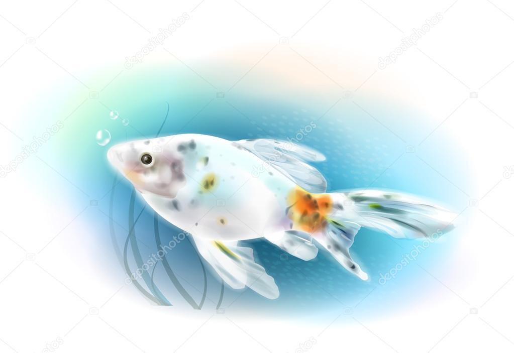 海の金魚。水族館の魚。リアルな...