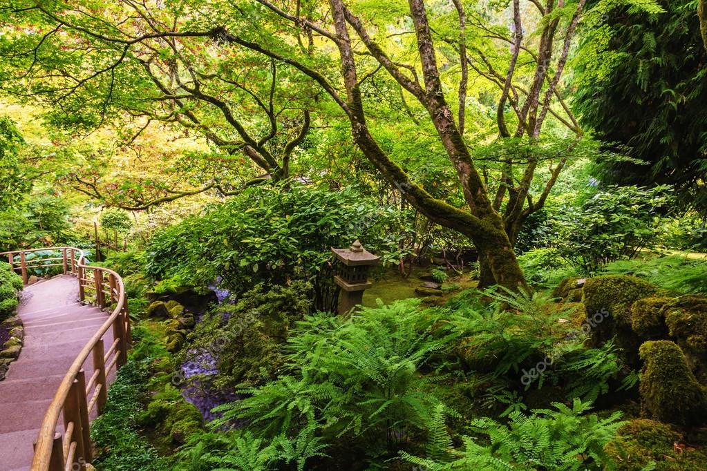 Quiet Japanese garden