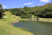 Jezero na golfovém hřišti v Lemuria Constance Resort.