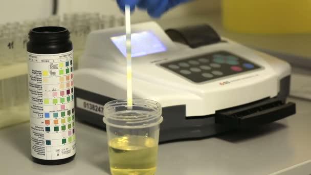 Urine analysis test strips on the study analyzer.