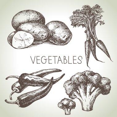 Hand drawn sketch vegetables set.