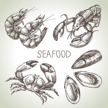 Hand drawn sketch set of seafood.