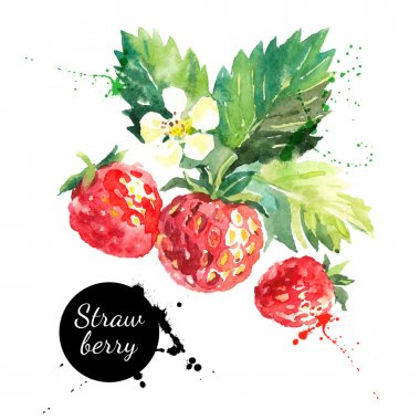 Hand drawn watercolor painting strawberries