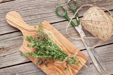 Bunch of garden thyme herb