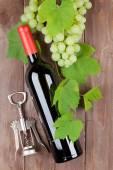 Fotografie Hrozen, láhev červeného vína