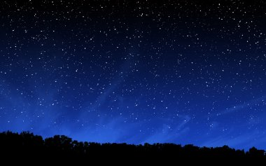 Night sky and forest