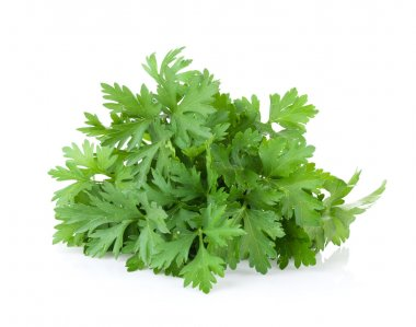 Fresh garden herbs. Parsley