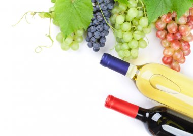 Bunches of grapes and wine