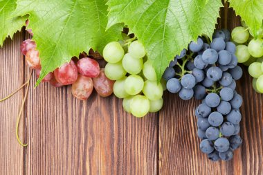 Bunches of grapes on wooden background
