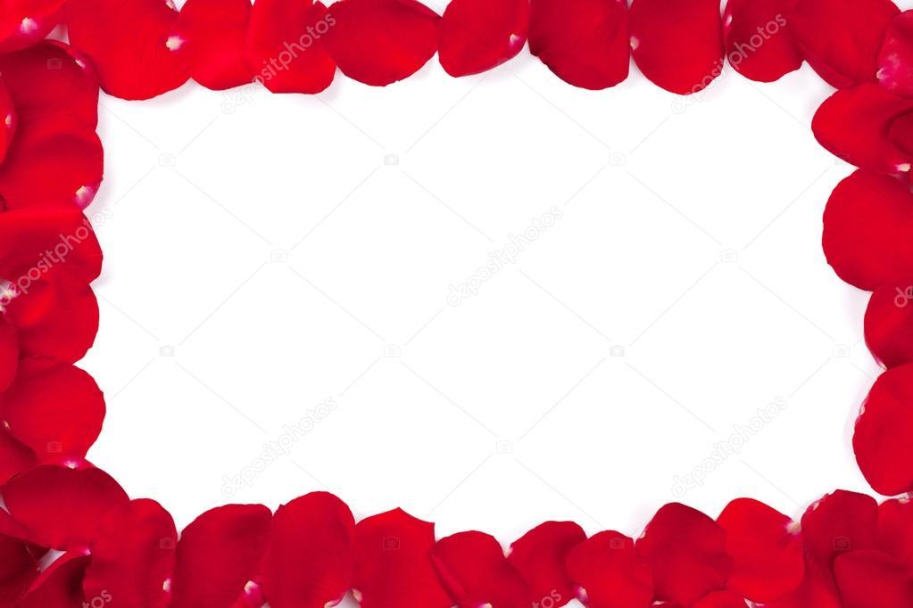 Rose petals frame — Stock Photo © karandaev #98812784