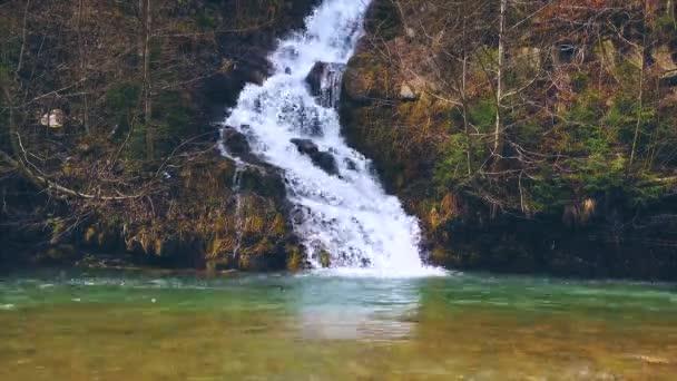 Lasso di tempo di montagna dei Carpazi primavera cascata