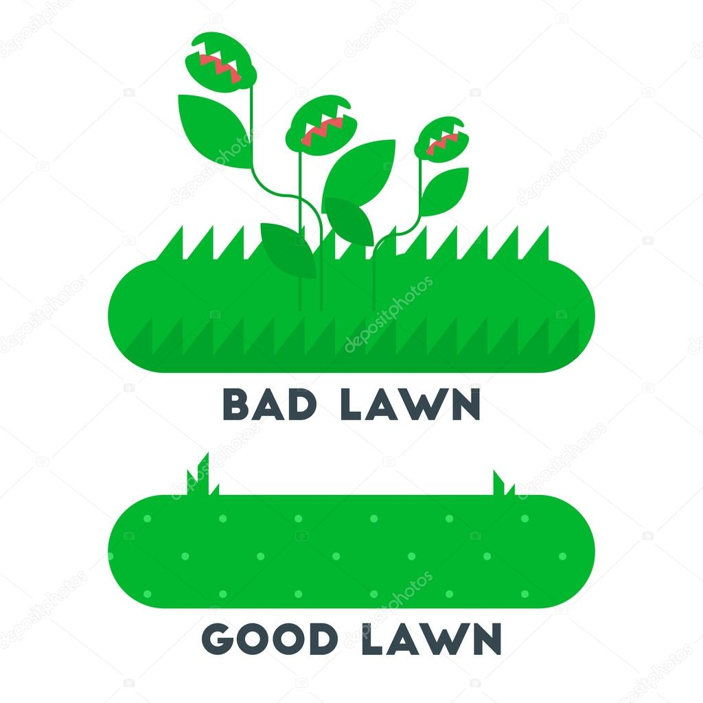 The bad and good green grass lawn concept