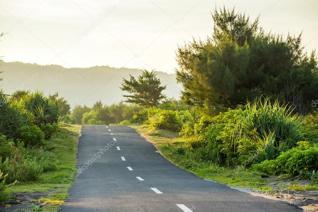 Beautiful rural sunny road