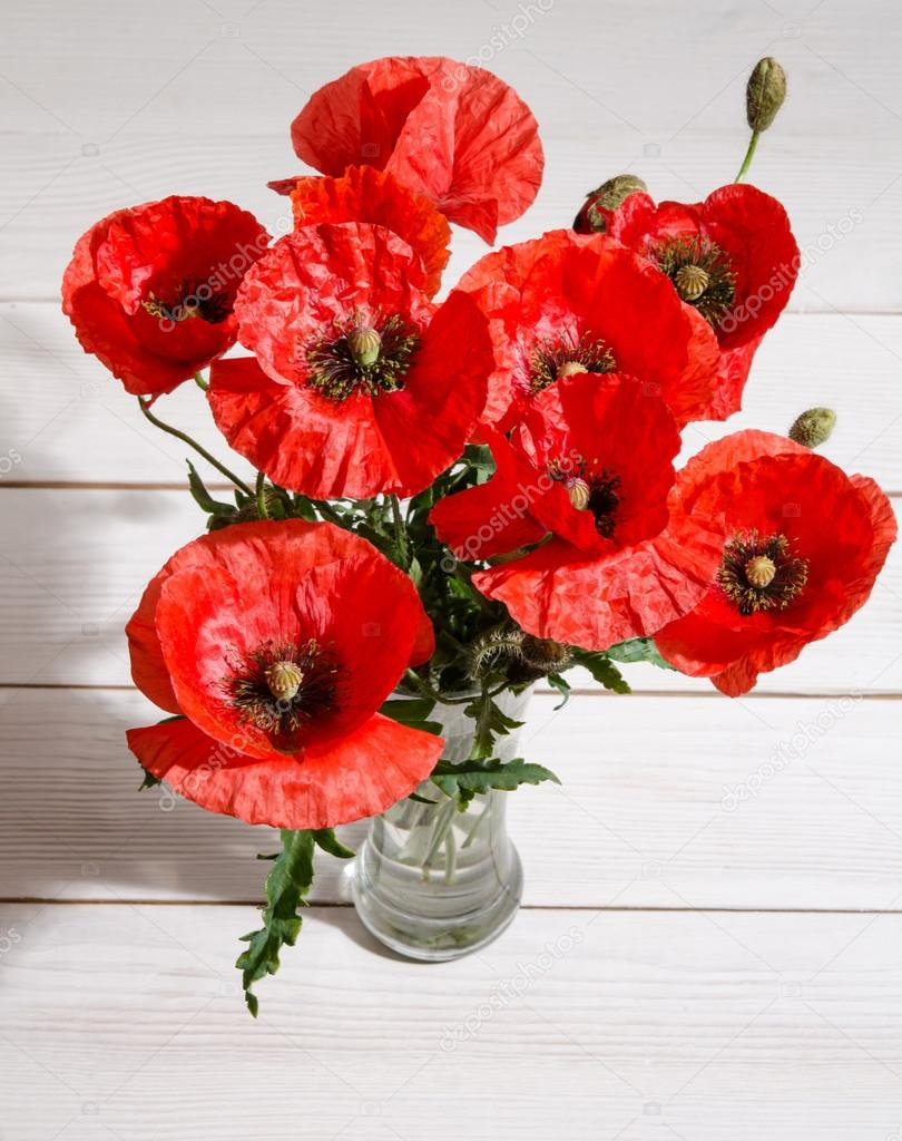 New Bouquet of red poppies in glass vase and poppy petals near on ol  XI85