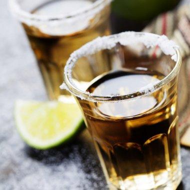 Tequila Shots stock vector