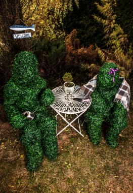 Family of live bushes. Outdoor fairy tale style photo.