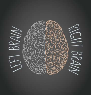Brain left and right