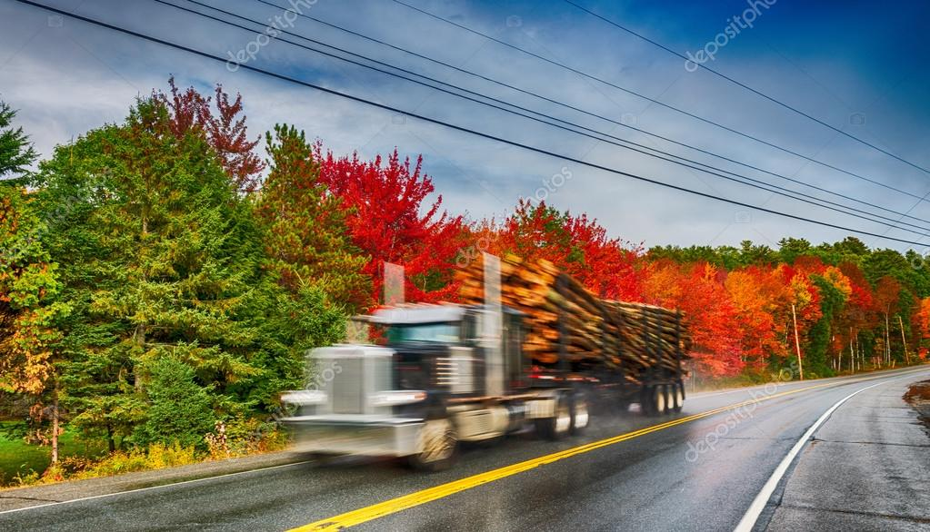 Fast moving truck along foliage road scenery