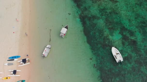 Aerial view of swimmers along a beautiful beach
