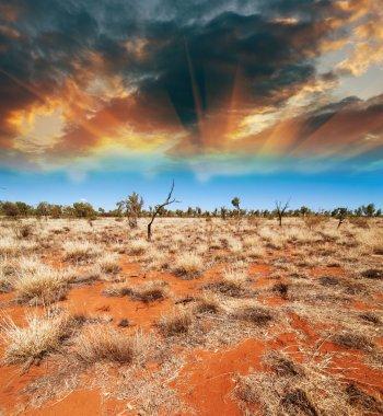 Australia, Outback landscape