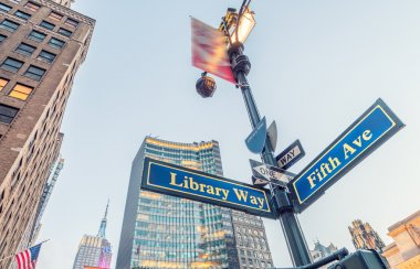 Library way and Fifth avenue street signs in New York City