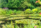 Francie Giverny Monet zahrada na jarní den