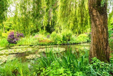 France Giverny Monet's garden on a spring day